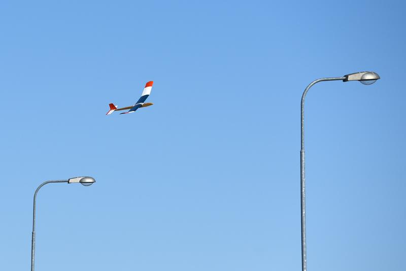 Lennokki lentää katuvalojen yllä.