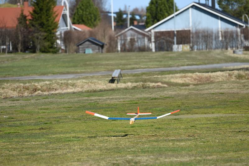 Lennokki laskeutuu nurmikolle.