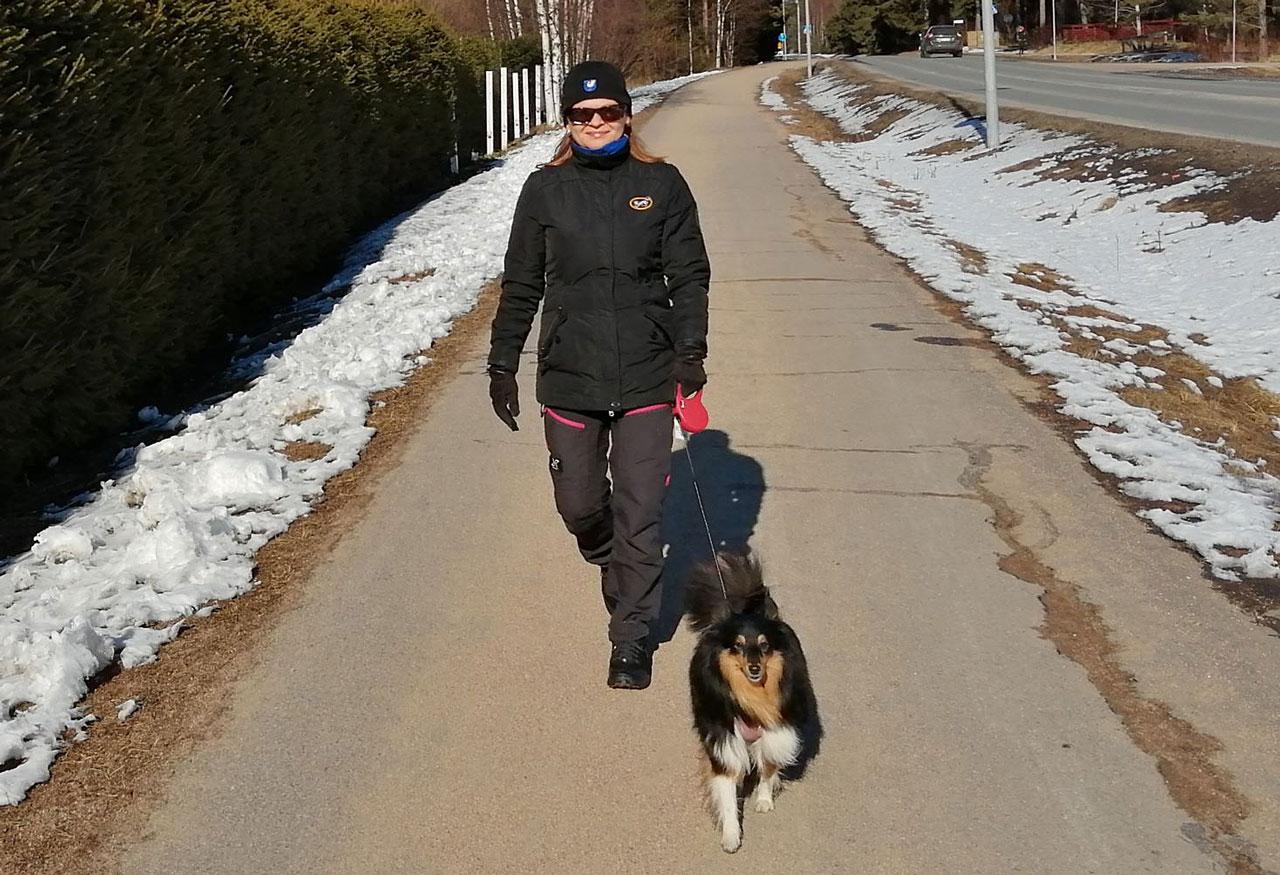 Virpi Jääskö ulkoiluttaa koiraa