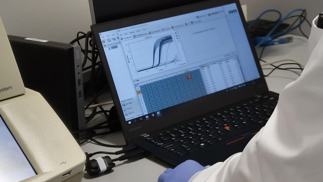 Ruokaviraston tietokone, jossa ohjelma kertoo, onko testatussa näytteessä koronavirusta.